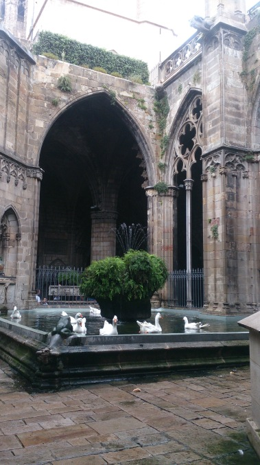 The Cloister of Barcelona Cathedral